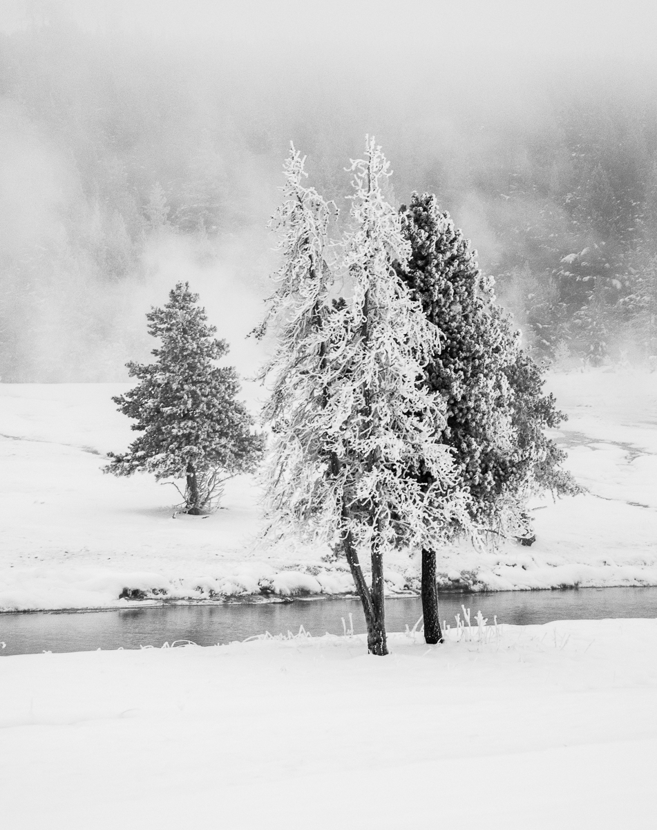 Yellowstone 12-31-12-35-Edit